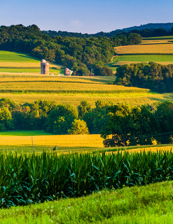 Evening view of rolling hills and farm fields in rural York County, Pennsylvania.