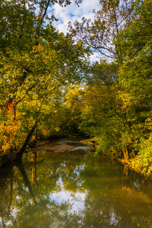 adams: Early autumn color along a creek in rural Adams County, Pennsylvania.