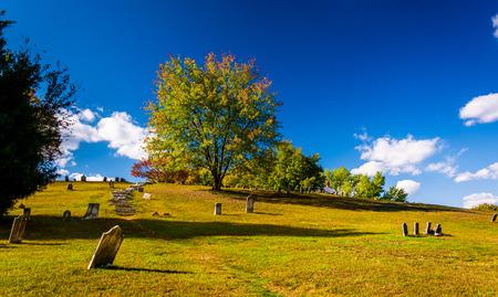 west virginia trees: Cemetary in Harpers Ferry, West Virginia.