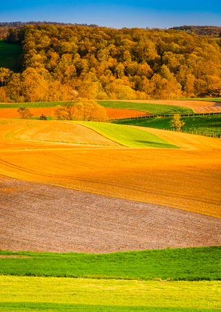 Evening light on farm fields in rural York County, Pennsylvania. photo