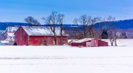 Red barns in a snow-covered field in rural York County, Pennsylvania.