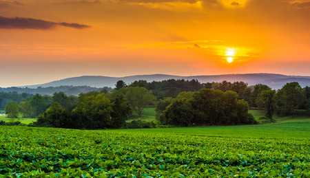Sunset over farm fields and the Piegon Hills in rural York County, Pennsylvania.