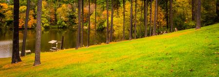 overlook: Trees on a hill above Lake Williams, near York, Pennsylvania. Stock Photo