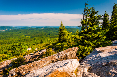 View from Spruce Knob, West Virginia. photo