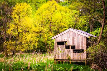 wildwood: Bird blind and spring color at Wildwood Park in Harrisburg, Pennsylvania.