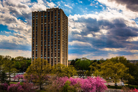 gaithersburg: Building and colorful trees in Gaithersburg, Maryland.