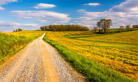 backroad: Dirt road through farm fields in rural York County, Pennsylvania. Stock Photo