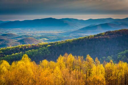 スカイライン ドライブ シェナンドー国立公園、バージニア州から朝の眺め。