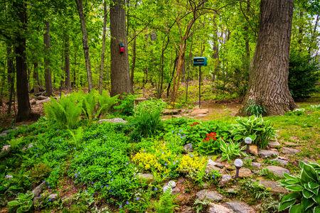 Garden in a backyard in rural York County, Pennsylvania.