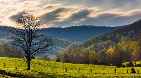 Colores de primavera en las colinas del Valle de Shenandoah, Virginia.