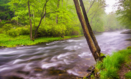 river county: Cascades on the Gunpowder River near Prettyboy Reservoir in Baltimore County, Maryland.