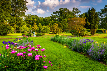 arboretum: Colorful flowers in a garden at Druid Hill Park, in Baltimore, Maryland.