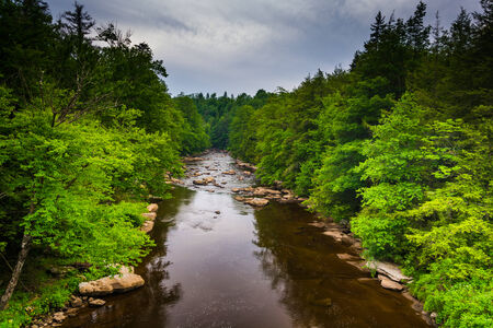 west virginia trees: View of the Blackwater River from a bridge at Blackwater Falls State Park, West Virginia. Stock Photo