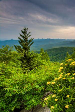north ridge: Evening view from Rough Ridge, near the Blue Ridge Parkway in North Carolina. Stock Photo