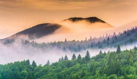 Fog over mountains at sunrise, seen from Devils Courthouse, near the Blue Ridge Parkway in North Carolina. photo
