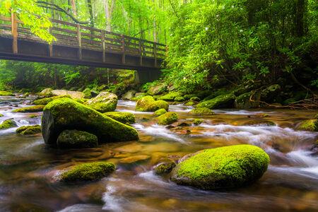 Cascades and walking bridge over the Oconaluftee River, at Great Smoky Mountains National Park, North Carolina. photo