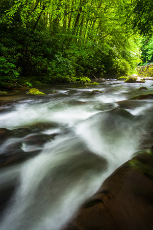 great smoky national park: Cascades in the Oconaluftee River, at Great Smoky Mountains National Park, North Carolina.