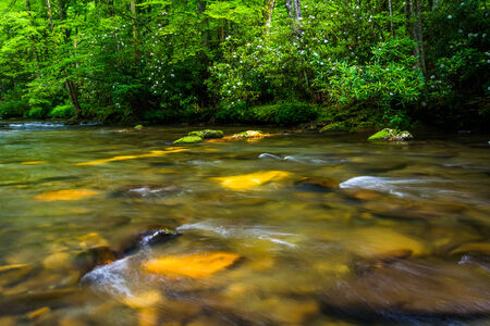 great smokies: Cascades in the Oconaluftee River, at Great Smoky Mountains National Park, North Carolina.