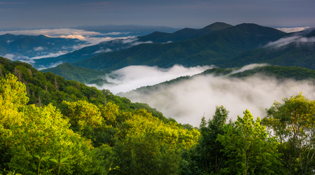 newfound gap: Low clouds in a valley, seen from Newfound Gap Road in Great Smoky Mountains National Park, North Carolina. Stock Photo