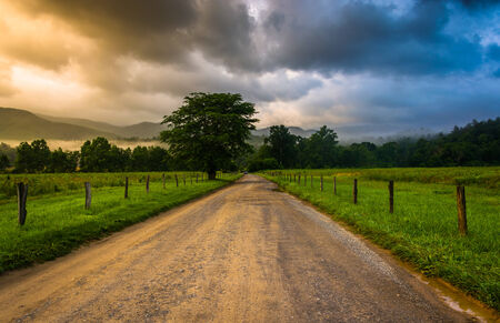 Dirt road on a foggy morning at Cades Cove , Great Smoky Mountains National Park, Tennessee. photo