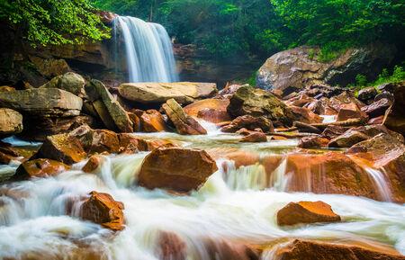 blackwater: Douglas Falls, on the Blackwater River in Monongahela National Forest, West Virginia.