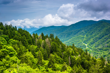 newfound gap: Dramatic view of the Appalachian Mountains from Newfound Gap Road, at Great Smoky Mountains National Park, Tennessee.