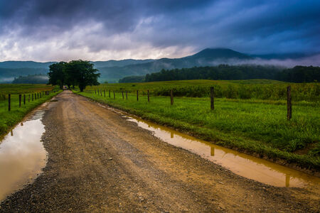 Puddles on a dirt road on a foggy morning at Cades Cove, Great Smoky Mountains National Park, Tennessee. photo