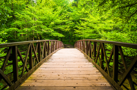 Walking bridge over a stream, at Great Smoky Mountains National Park, Tennessee. photo