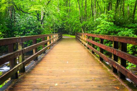 Walking bridge over the Oconaluftee River, at Great Smoky Mountains National Park, North Carolina. photo