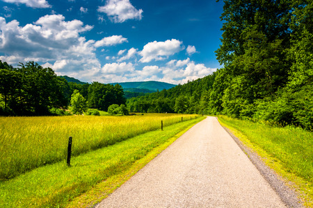allegheny: Farm field along a dirt road in the rural Potomac Highlands of West Virginia.