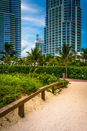 highrises: Path to the beach and highrises in South Beach, Miami, Florida.
