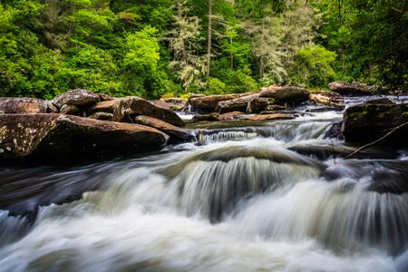dupont: Cascades on Little River, in Dupont State Forest, North Carolina.