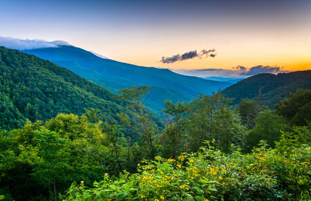 north ridge: Morning view from the Blue Ridge Parkway in North Carolina.