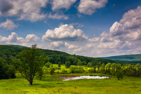 allegheny: Small pond at Canaan Valley State Park, West Virginia.