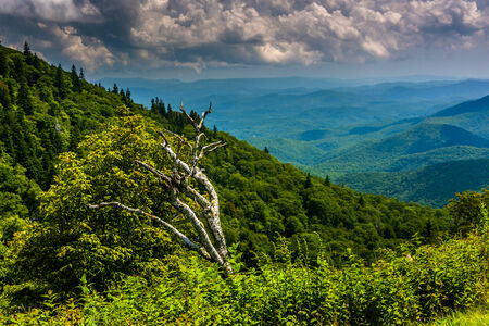 north ridge: View from Devils Courthouse Overlook, on the Blue Ridge Parkway in North Carolina.