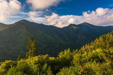 smokies: Luz de la tarde en el Smokies, visto desde un mirador en Newfound Gap Road en Great Smoky Mountains National Park, Tennessee.