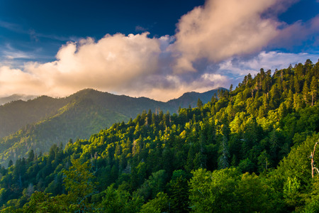 Evening light on the Smokies, seen from an overlook on Newfound Gap Road in Great Smoky Mountains National Park, Tennessee.