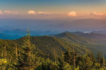 great smoky national park: Evening view of the Appalachian Mountains from Clingmans Dome in Great Smoky Mountains National Park, Tennessee.