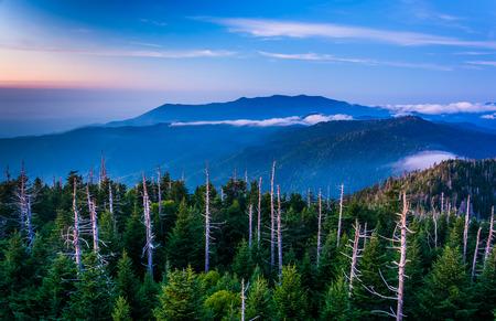 smokies: Vista de niebla en los Smokies de Dome Torre de Observaci�n de Clingman, en Great Smoky Mountains National Park, Tennessee.
