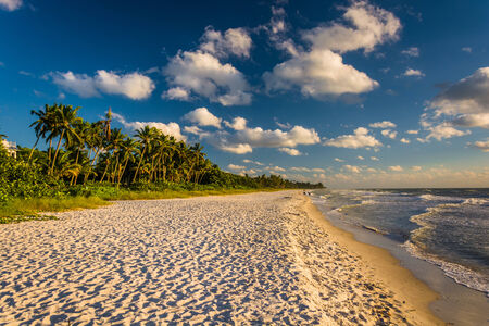 florida: Evening light at the beach in Naples, Florida. Stock Photo