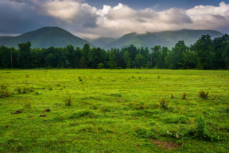 great smoky mountains: Field and mountains at Cades Cove, Great Smoky Mountains National Park, Tennessee.