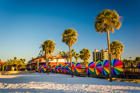 Palm trees and colorful beach umbrellas in Clearwater Beach, Florida.