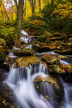 Autumn color and cascades on Stoney Fork, near the Blue Ridge Parkway, North Carolina. 版權商用圖片