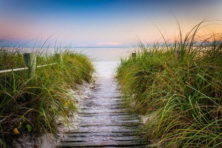 Grassen en hek langs pad naar Smathers strand bij zonsondergang, Key West, Florida.