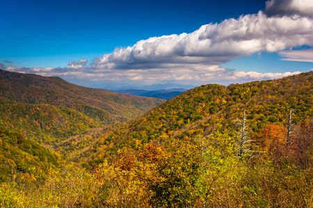 north ridge: View of autumn color in the Appalachian Mountains from the Blue Ridge Parkway north of Asheville, North Carolina. Stock Photo