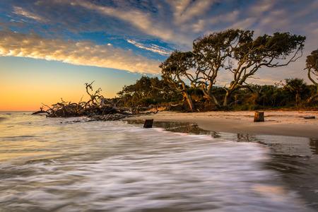 S ochtends licht en golven op Driftwood Beach, aan de Atlantische Oceaan bij Jekyll Island, Georgië.