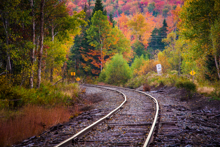 forest railroad: Autumn color along a railroad track in White Mountain National Forest, New Hampshire.