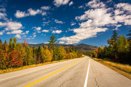 autumn color: Autumn color on Owls Head Highway in White Mountain National Forest, New Hampshire.