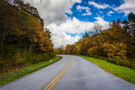 blue ridge: Autumn color along the Blue Ridge Parkway, North Carolina.