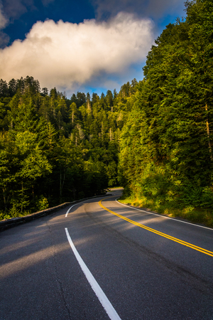 great smoky mountains national park: Newfound Gap Road, in Great Smoky Mountains National Park, Tennessee.